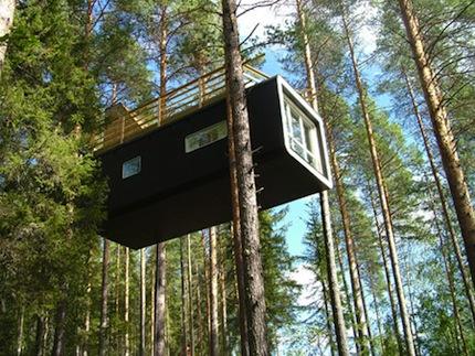 Treehotel.jpg