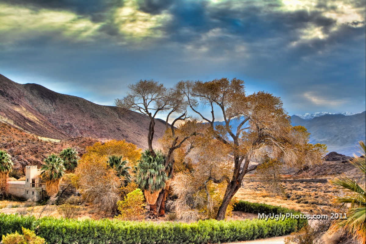 Оазис в Долине смерти, США.jpg