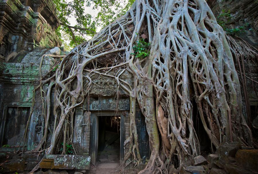 Камбоджа.jpg