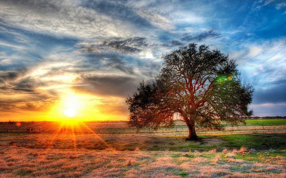 Закат на техасской ферме.jpg