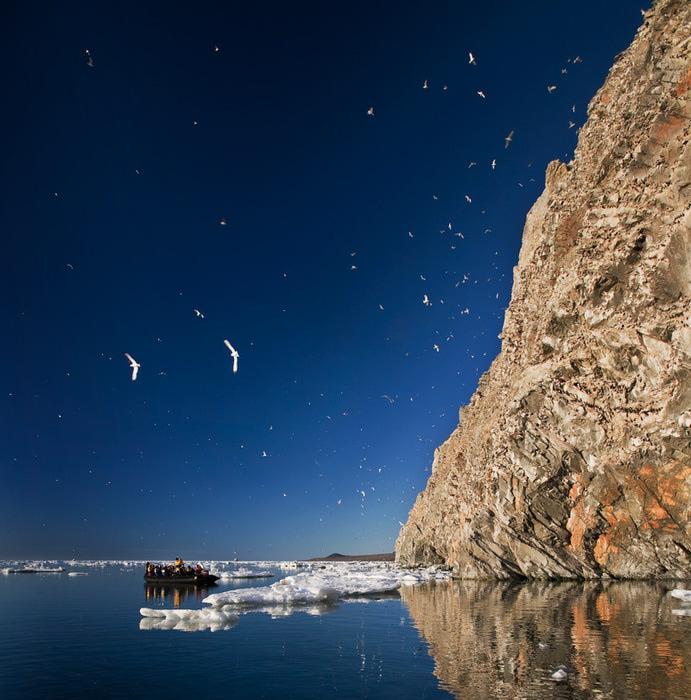 'Остров Врангеля', ландшафт.jpg